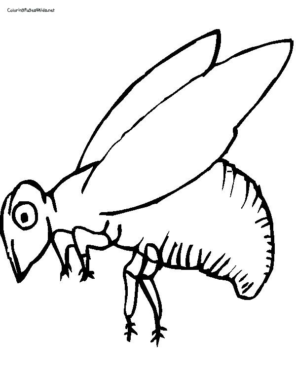 abeille dessins à colorier dessins à colorier pour enfants