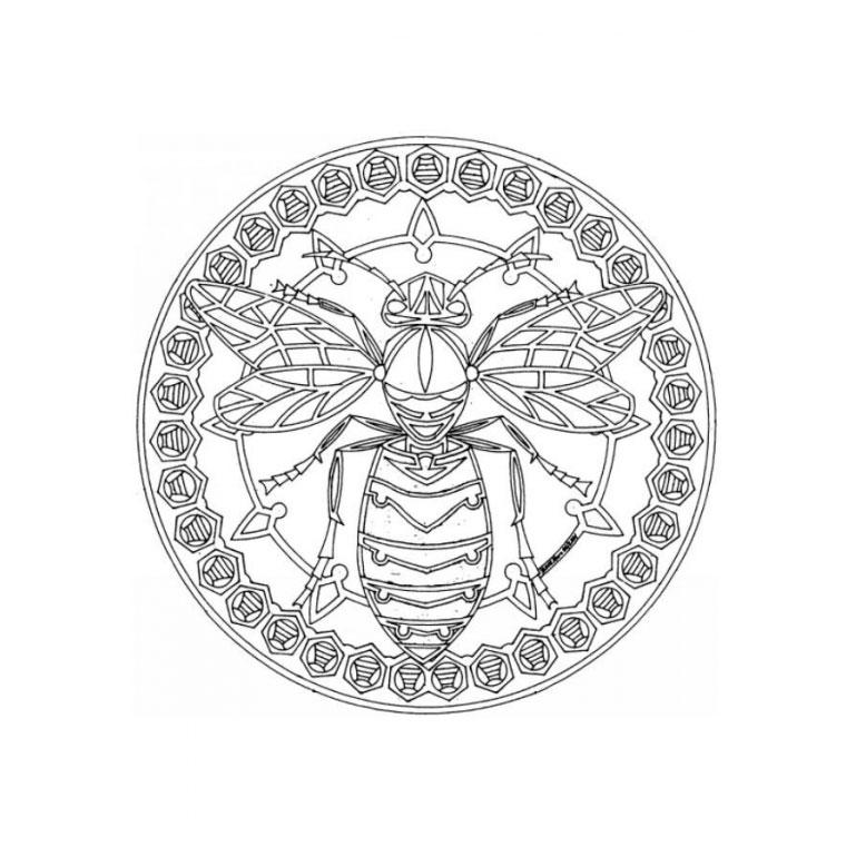 coloriage mandala abeille pour imprimer le coloriage mandala abeille