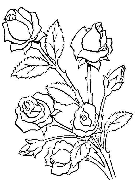 image 18632 coloriage adulte gratuit