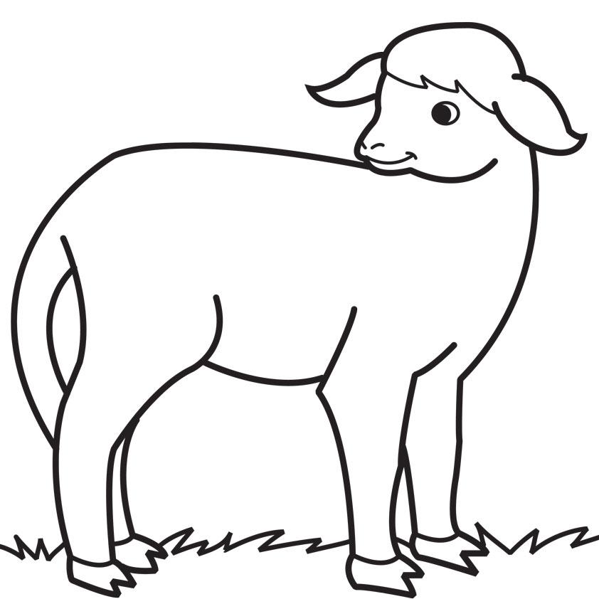S lection de coloriage agneau imprimer sur page 3 - Dessin agneau ...