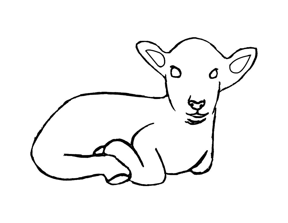 S lection de coloriage agneau imprimer sur page 4 - Dessin agneau ...