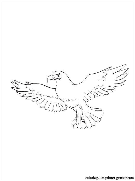 dessin et coloriage aigle à imprimer coloriage à imprimer gratuit