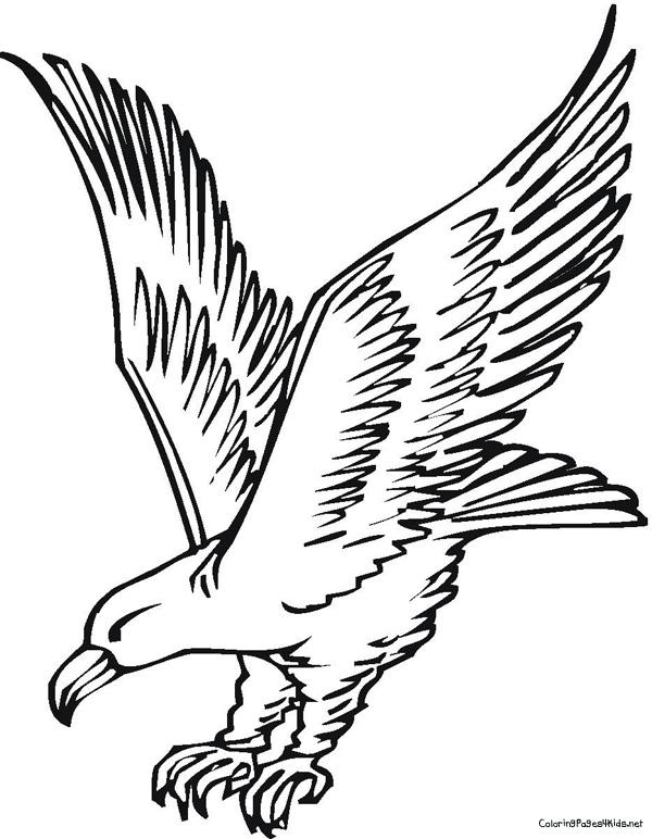 55 dessins de coloriage aigle imprimer sur page 2 - Dessin d aigle royal ...