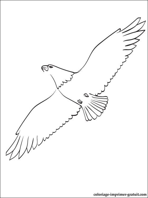 55 dessins de coloriage aigle imprimer sur page 3 - Dessin d aigle royal ...