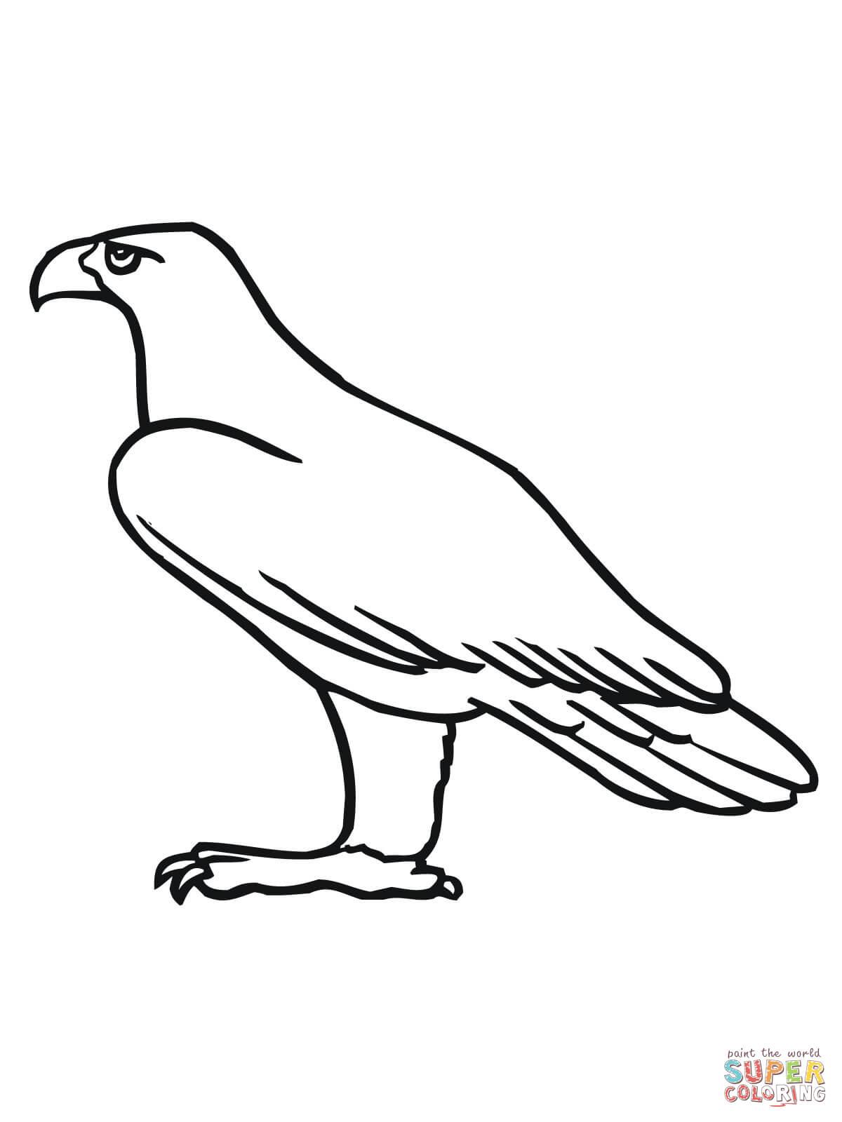 golden aigle coloriage en ligne