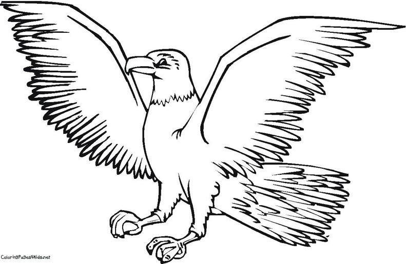 55 dessins de coloriage aigle imprimer sur page 5 - Dessin d aigle royal ...