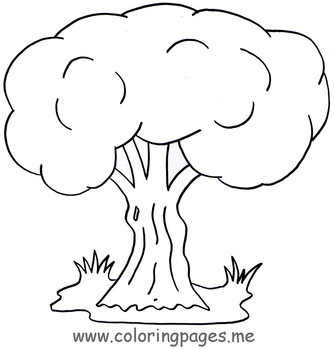 66 dessins de coloriage arbre imprimer sur page 2. Black Bedroom Furniture Sets. Home Design Ideas