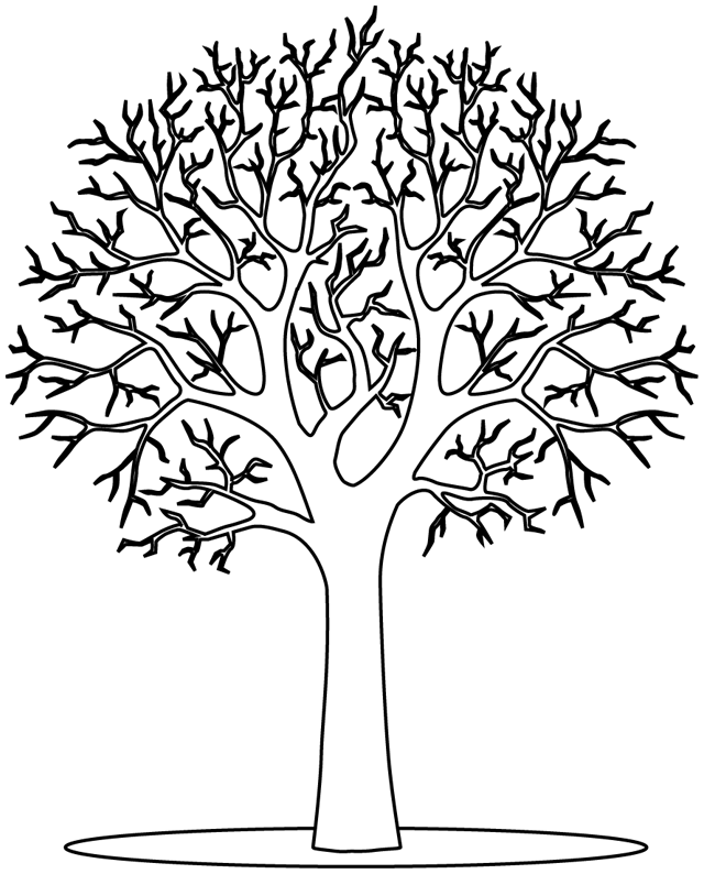 dory.fr images arbres arbre hiver