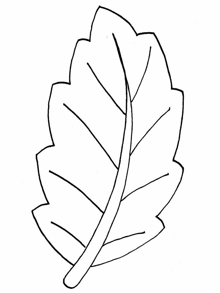 coloriage feuilles feuilles à colorier