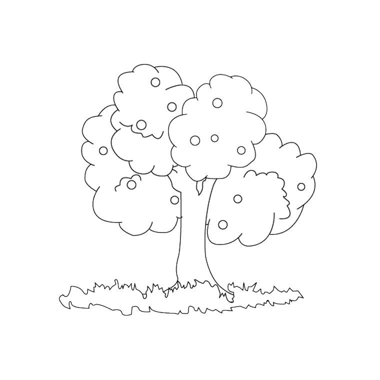 imprimer le coloriage arbre saison pour imprimer le coloriage arbre