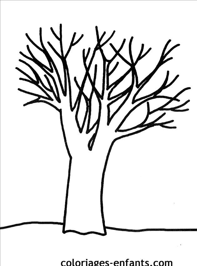 les coloriages d'arbres à imprimer coloriages enfants.com