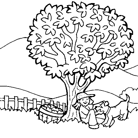dessin à colorier d'arbre