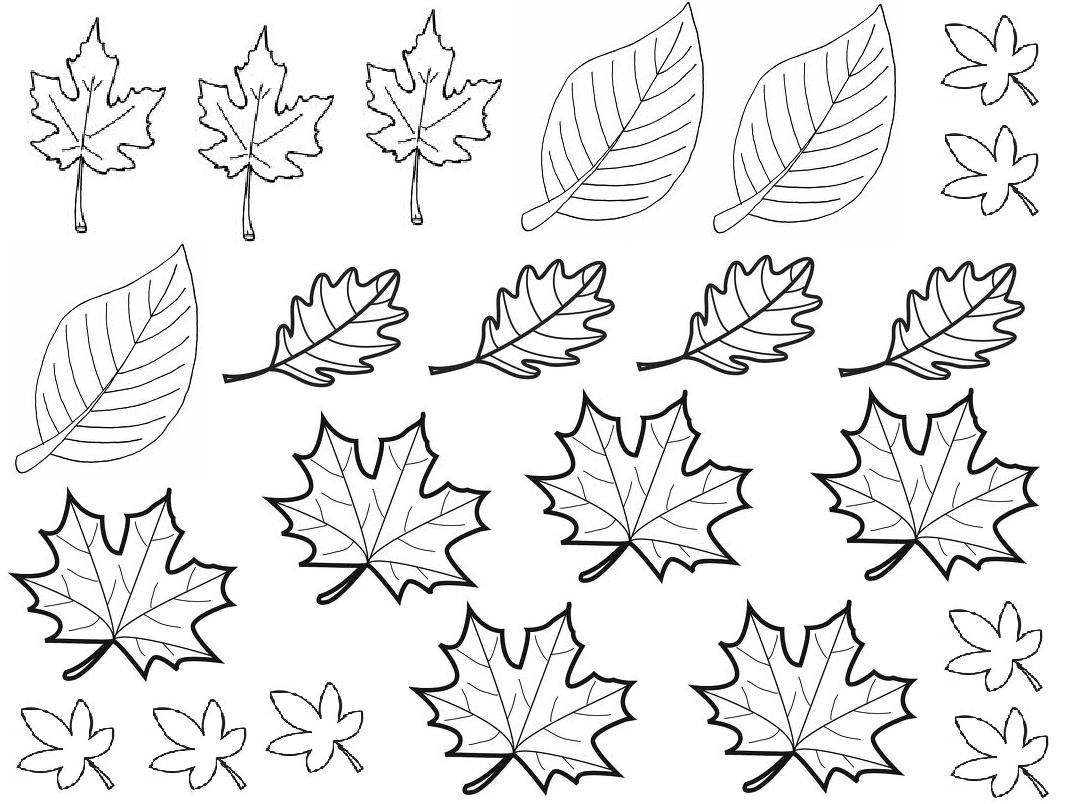 coloriage dessin automne