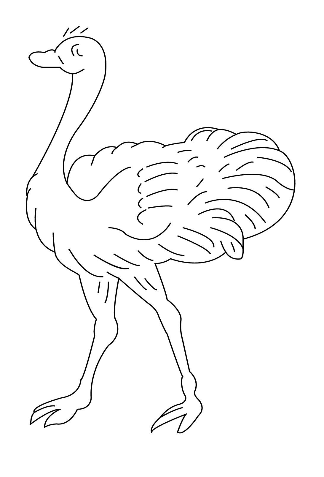 S lection de coloriage autruche imprimer sur laguerche - Image d animaux a imprimer ...