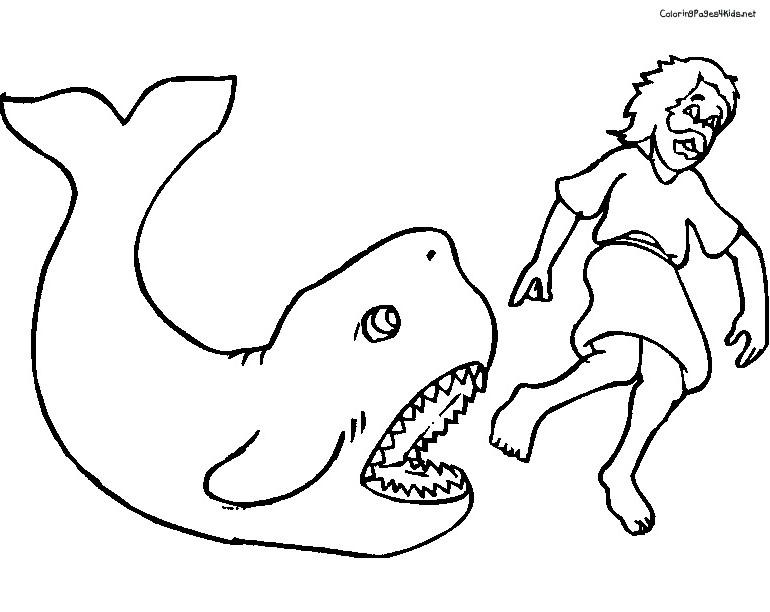Activité de coloriage baleine