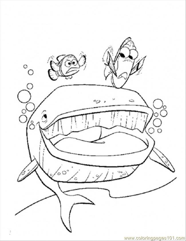 Dessin gratuit baleine a colorier