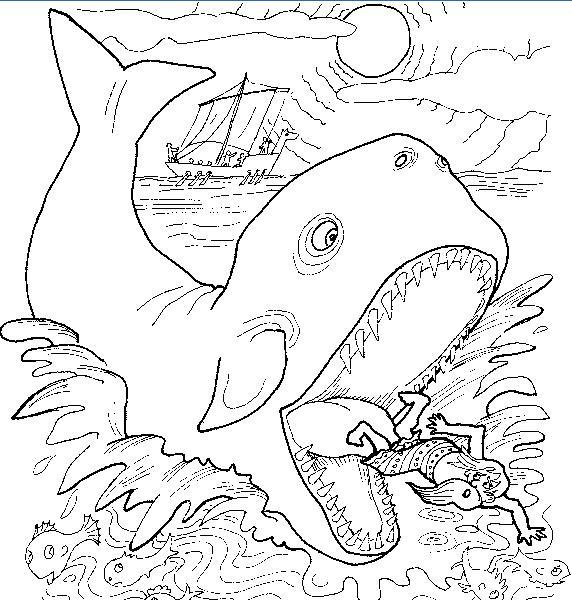 Image de baleine a dessiner