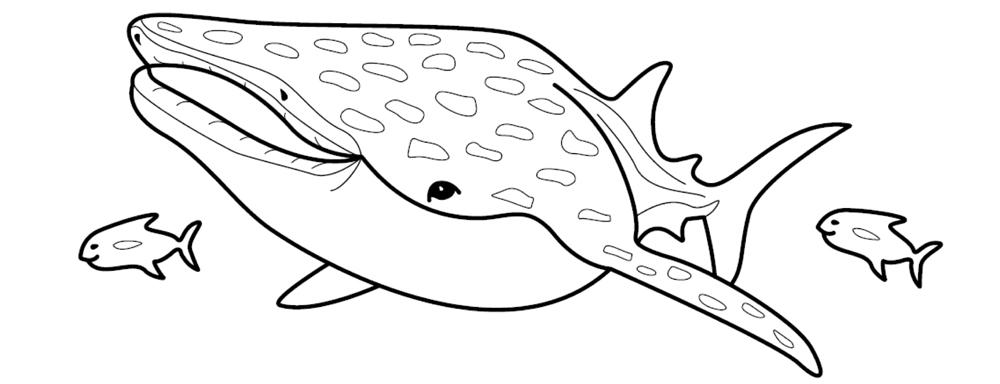 Finding nemo coloring pages - Baleine dessin ...