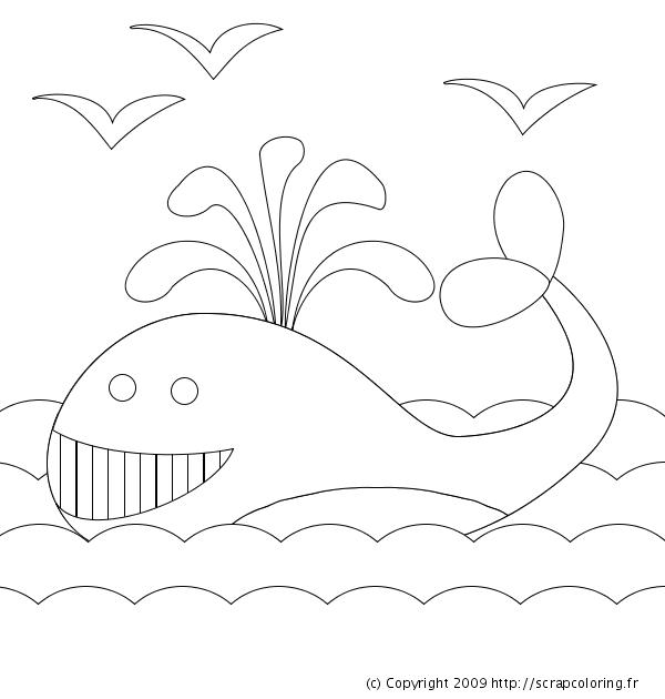 Coloriage de baleine gratuit