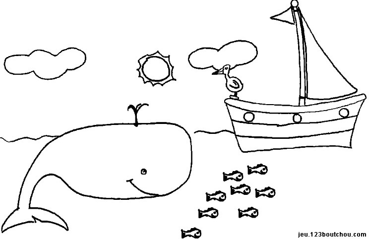 Coloriage baleine