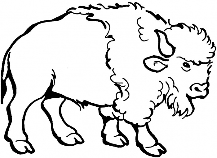 Cartoon Yak Coloring Pages