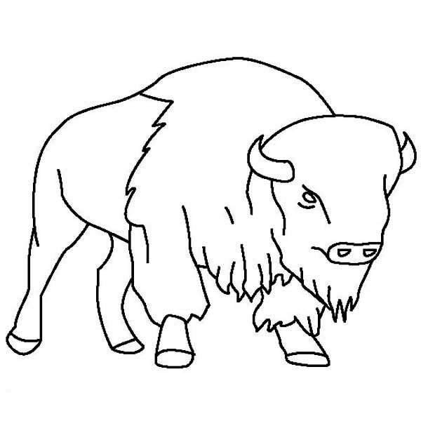 S lection de coloriage bison imprimer sur page 4 - Bison coloriage ...