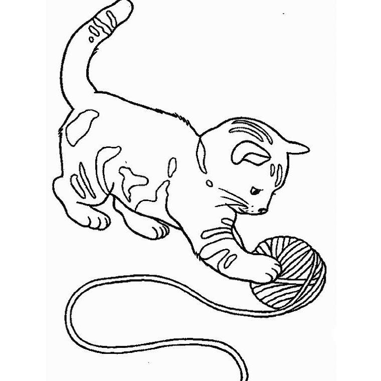 Coloriage de chat gratuit a imprimer et colorier