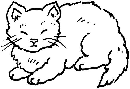 Coloriage de chat a imprimer