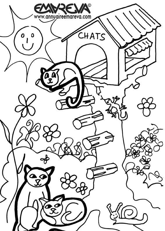 Coloriage de chat imprimer et colorier