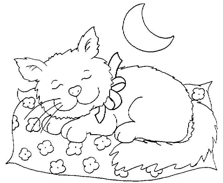 Image de chat a imprimer et colorier