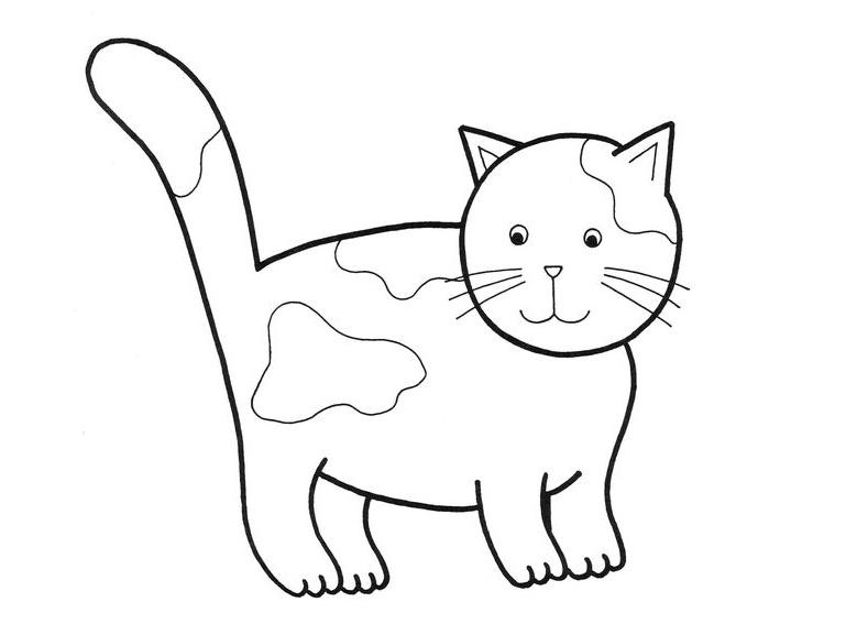 Dessin gratuit chat a imprimer