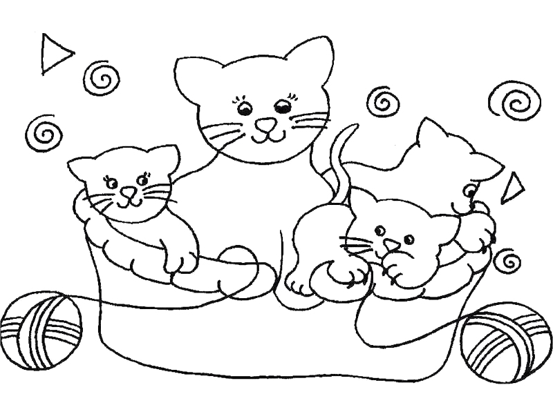 Coloriage chat a colorier