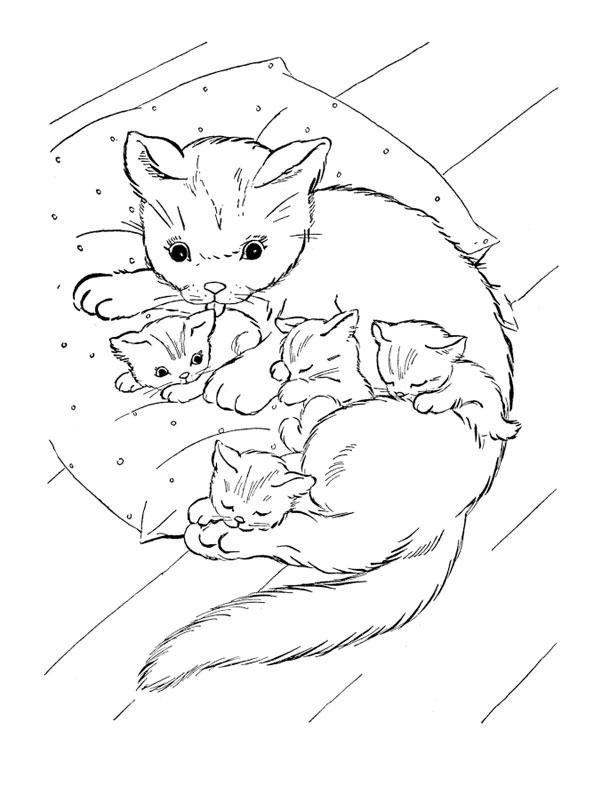Dessin de chat gratuit à imprimer et colorier