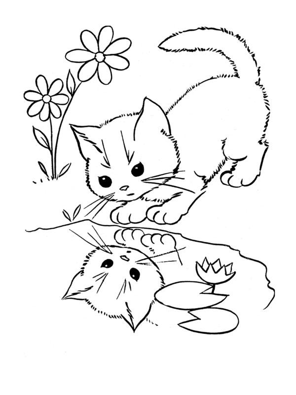 Coloriage de chat gratuit a imprimer