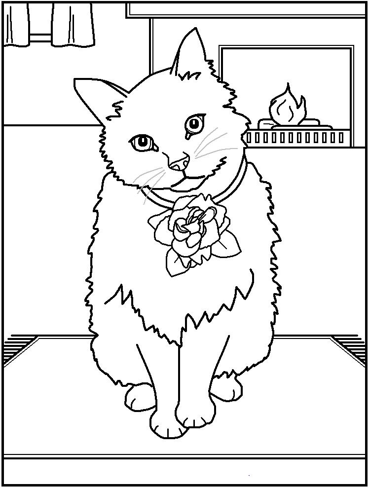 Dessin gratuit chat à imprimer