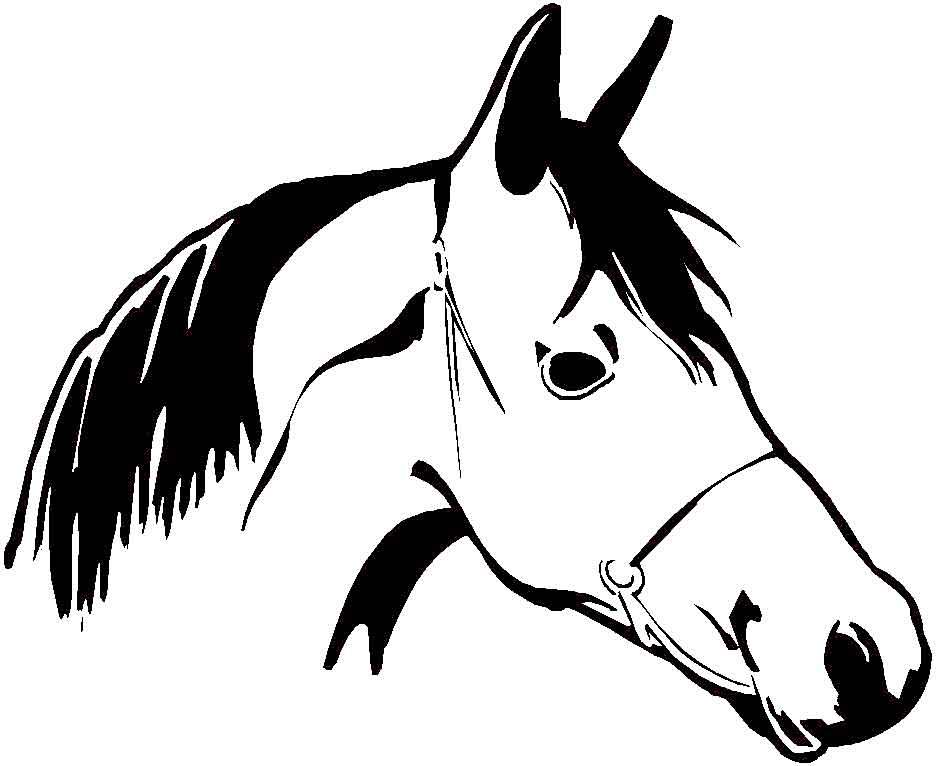 Dessin gratuit de cheval a imprimer