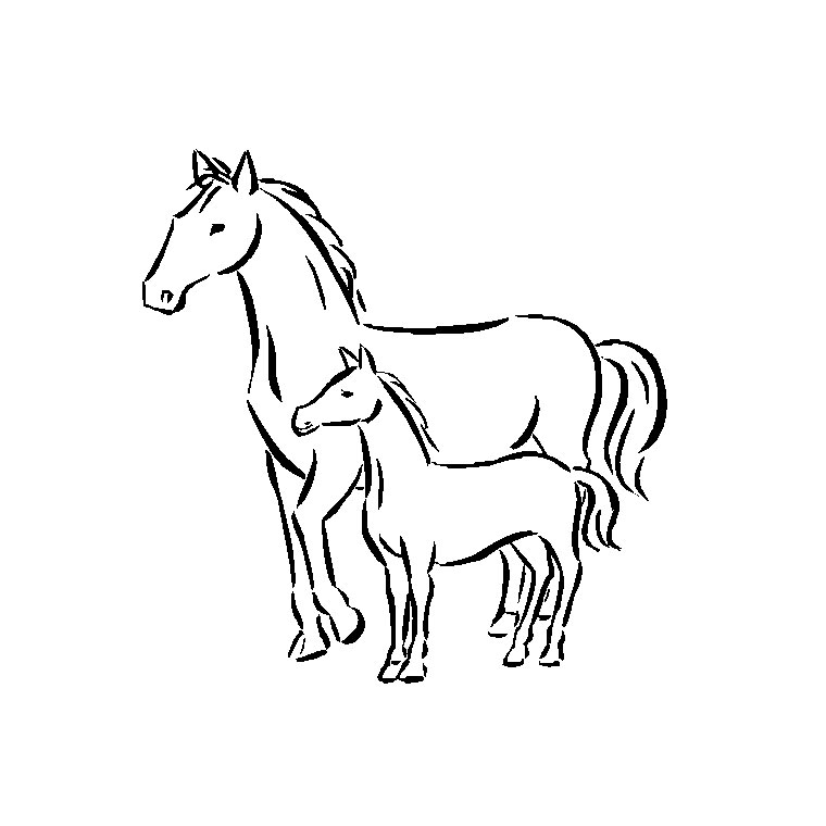 Coloriage de cheval a colorier