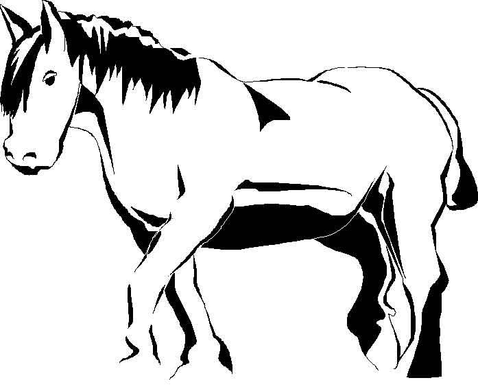 Activité de coloriage cheval a colorier