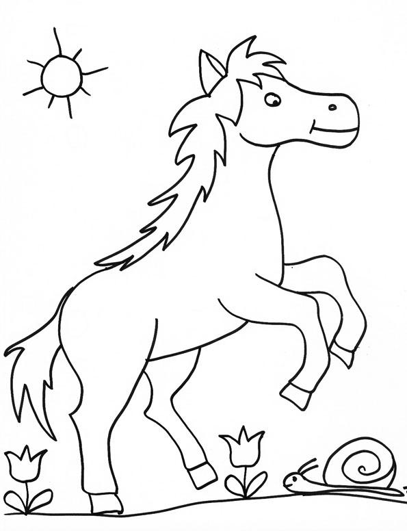 Image de cheval a colorier