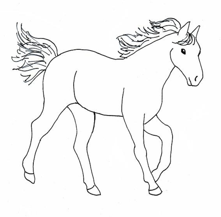 Coloriage gratuit de cheval à imprimer