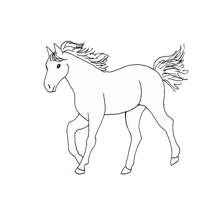 Image de cheval a dessiner