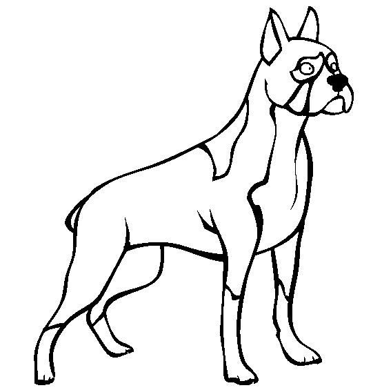 Coloriage chien a imprimer