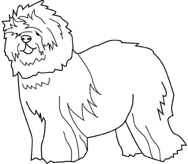 Dessin gratuit chien a colorier