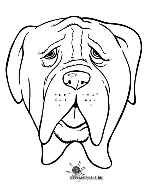 Dessin gratuit de chien à imprimer