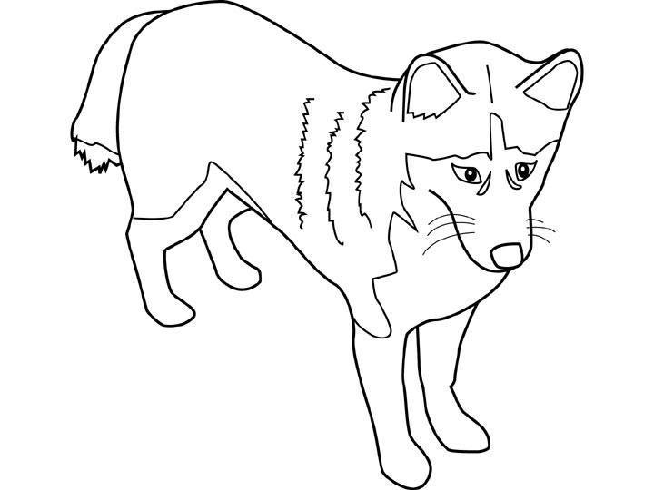 Dessin de chien a imprimer - Coloriage chien ...