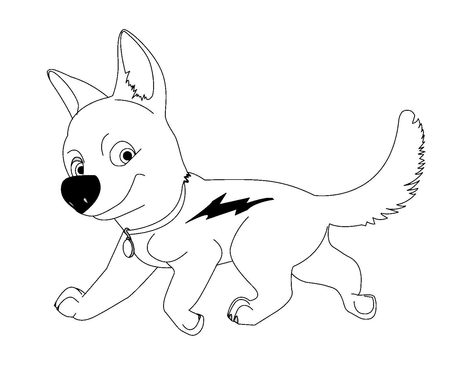 coloriage chien a imprimer dessin de chien gratuit