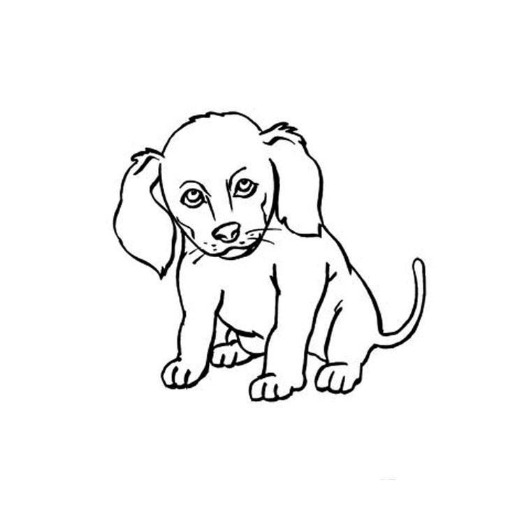Dessin de chien gratuit à imprimer et colorier