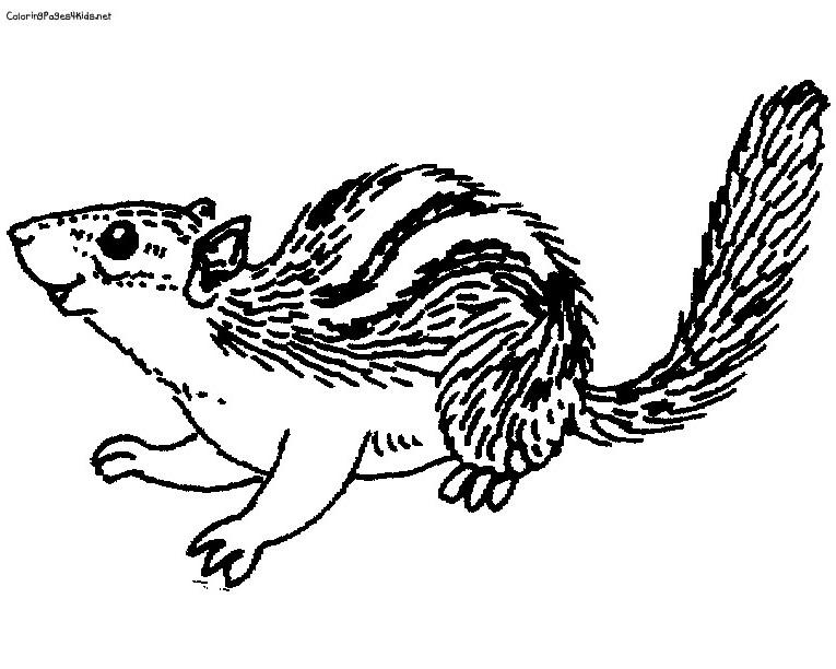 80 dessins de coloriage chipmunks imprimer sur page 3 - Coloriage alvin et les chipmunks simon ...
