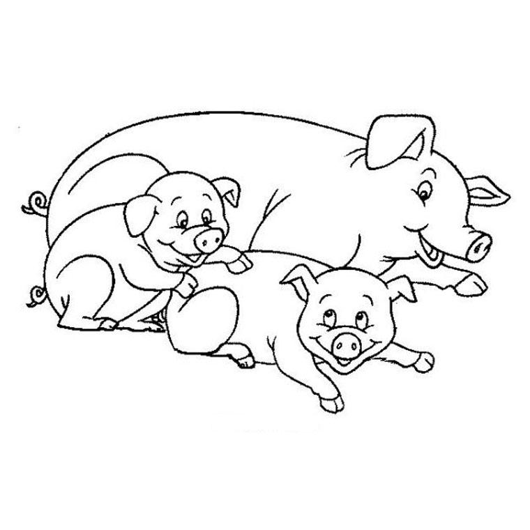 plaisir seule chat en ligne cochon