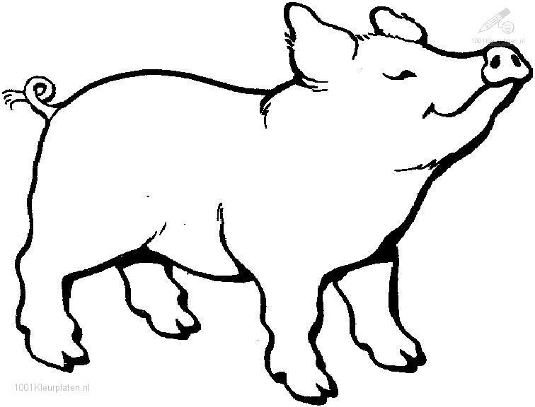 Coloriage Cochon Colorier.Selection De Coloriage Cochon A Imprimer Sur Laguerche Com Page 3